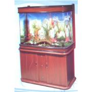 Glass Fish Tank jkQ100